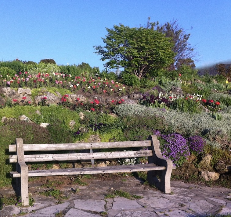 Bench with flower gardens in the background